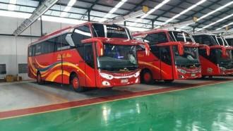 PO Medali Mas Rilis Dua Bus Baru, Bersasis Mercedes-Benz