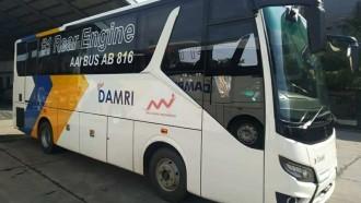 Seperti Ini Tampang Bus Medium Bermesin Belakang Damri
