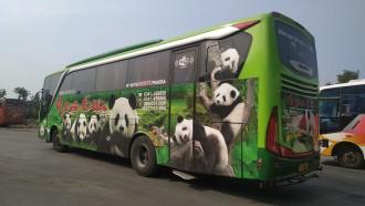 Adanya Tol Trans Jawa dan Sumatra, Pemudik yang Naik Bus Malah Merosot