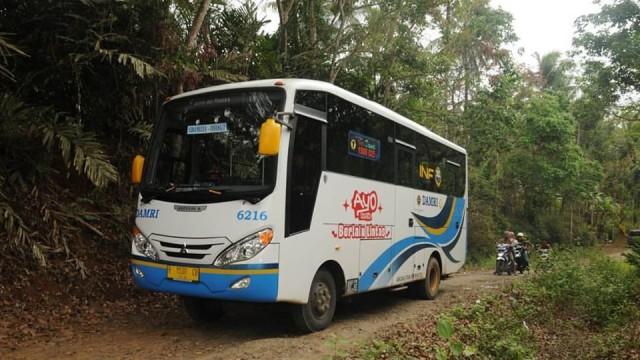 Naik Bus Damri Gratis Di Palangkaraya Bisa Langsung Dijemput