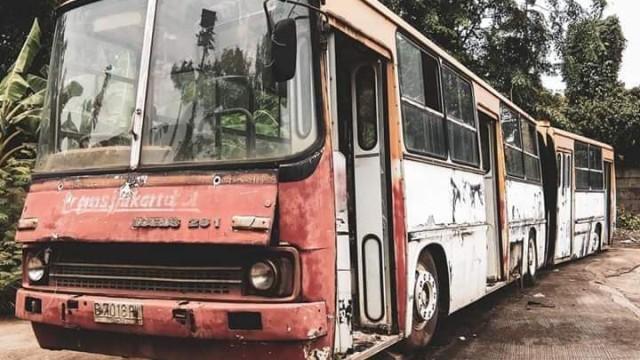 Ikarus, Bus Hongaria Pelopor Transjakarta