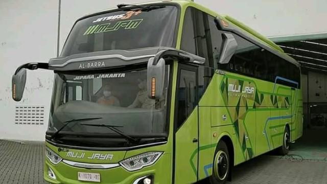 PO Muji Jaya Hadirkan Bus Ultimate Ride Baru, Jadi Kado Ulang Tahun