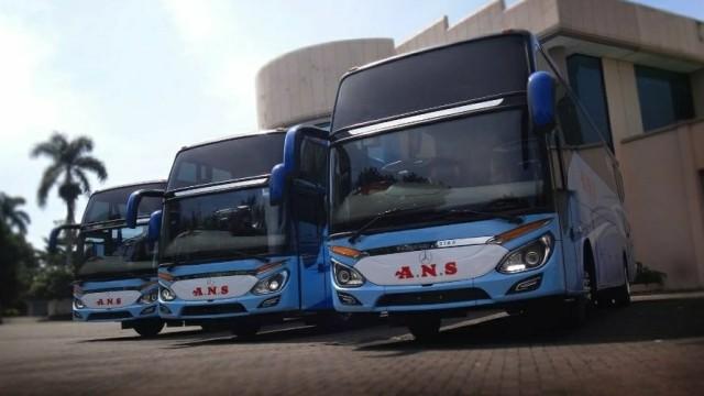 Bus ANS Mulai Layani Penumpang Dari Terminal Kampung Rambutan