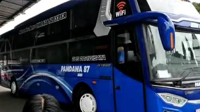 Bus Sleeper Class Adi Putro Mulai Terkuak!